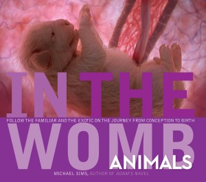 In the Womb: Animals (cover)