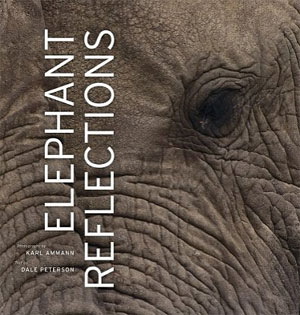 Elephant Reflections