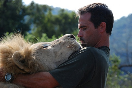 Lion ranger Kevin Richardson