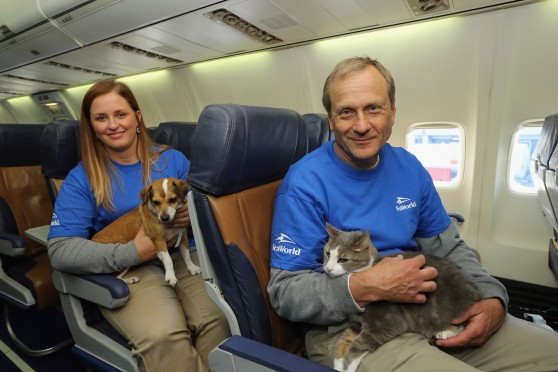 SeaWorld Rescue team members Jessica Decoursey and Dr. David Brinker pose with rescue dogs onboard the Southwest Airlines flight.