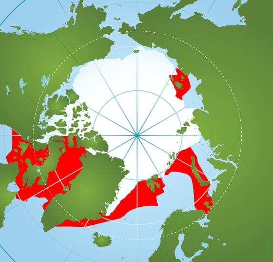 Narwhal range map