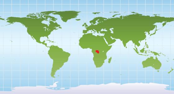 Bonobo distribution map