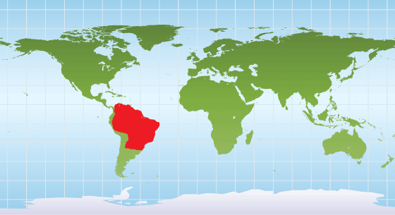 Brazilian tapir range map