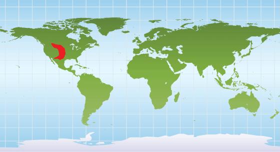 Prairie dog distribution map