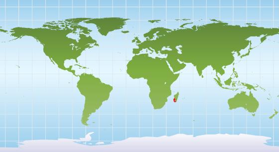 Ring-tailed lemur range map